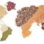 Venerdì 5 aprile a Udine – Agricoltura biologica e commercio equo